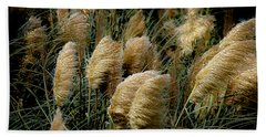 Golden Pampas In The Wind Beach Sheet by DigiArt Diaries by Vicky B Fuller