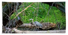 Heron Habitat Beach Towel by Sue Stefanowicz