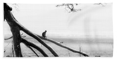 Monkey Alone On A Branch Beach Towel by Darcy Michaelchuk