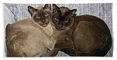 Beach Towel featuring the photograph Tonkinese Pals by Sally Weigand