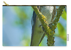 Carry-all Pouch featuring the photograph Bird In Tree by Rod Wiens