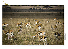Herd Of Antelope Carry-all Pouch by Darcy Michaelchuk