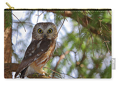 Saw-whet Owl Carry-all Pouch