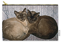 Carry-all Pouch featuring the photograph Tonkinese Pals by Sally Weigand