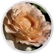 Round Beach Towel featuring the photograph Orange Rose by Joy Watson