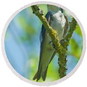 Round Beach Towel featuring the photograph Bird In Tree by Rod Wiens