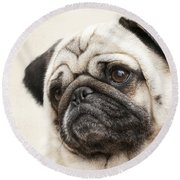 L-o-l-a Lola The Pug Round Beach Towel by Kathy Clark