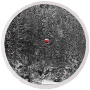Round Beach Towel featuring the photograph Orb by Stuart Turnbull
