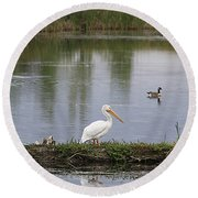 Pelican Reflection Round Beach Towel