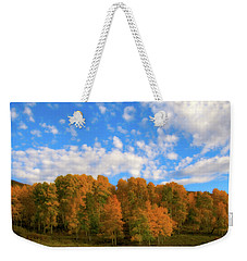 Weekender Tote Bag featuring the photograph Aspens by Steve Stuller