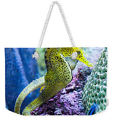 Colorful Seahorses Weekender Tote Bag by Jim And Emily Bush
