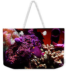 Weekender Tote Bag featuring the photograph Colors Of Underwater Life by Clayton Bruster