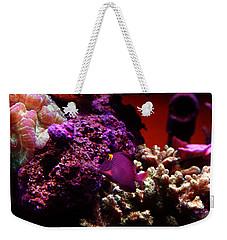 Colors Of Underwater Life Weekender Tote Bag by Clayton Bruster