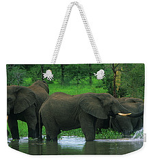 Elephant Shower Weekender Tote Bag