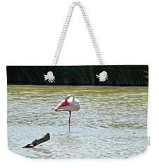 Flamingo Weekender Tote Bag by Manuela Constantin