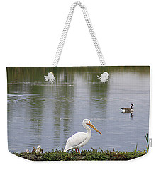 Pelican Reflection Weekender Tote Bag by Alyce Taylor