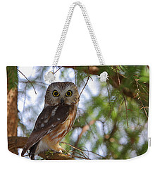 Saw-whet Owl Weekender Tote Bag