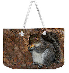 Weekender Tote Bag featuring the photograph Squirrell by Pedro Cardona
