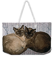 Weekender Tote Bag featuring the photograph Tonkinese Pals by Sally Weigand