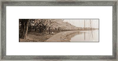 Cherry Blossoms View At Tidal Basin Framed Print by Fred Schutz Collection