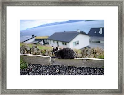 The Faroe Islands Framed Print