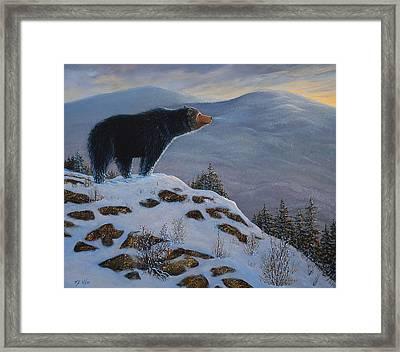 Last Look Black Bear Framed Print by Frank Wilson