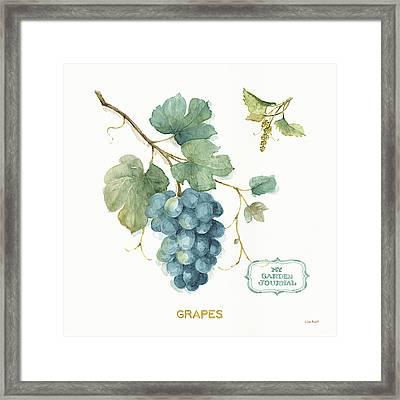 My Greenhouse Fruit IIi Framed Print by Lisa Audit