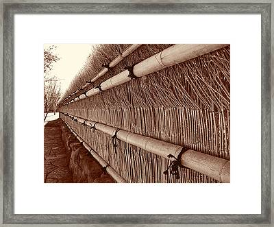 Steadfast Framed Print by Wendy J St Christopher