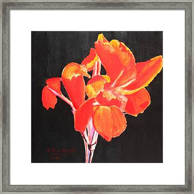 Red Canna Framed Print by M Diane Bonaparte