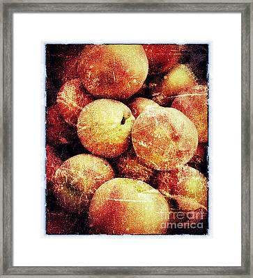 End Of Season Framed Print by Jim Moore