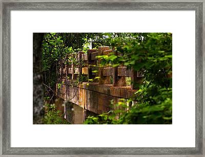 Old Joshua Highway Framed Print