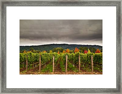 Estate Framed Print by Ryan Weddle