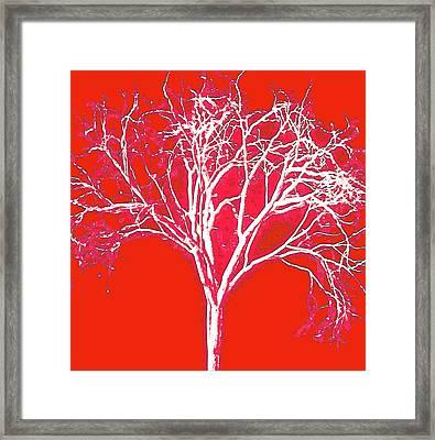 Imagination Tree Framed Print by James Mancini Heath