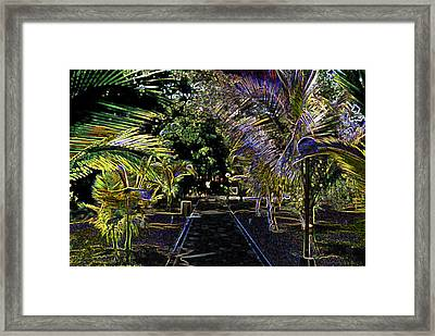 Framed Print featuring the digital art Night In Mexico by Tammy Sutherland