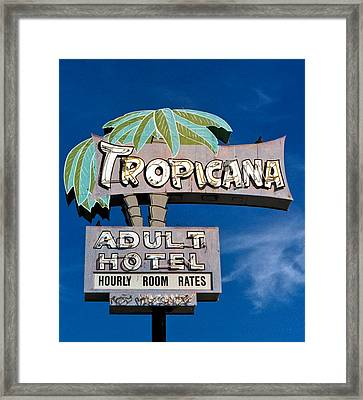 Tropicana Framed Print by Matthew Bamberg