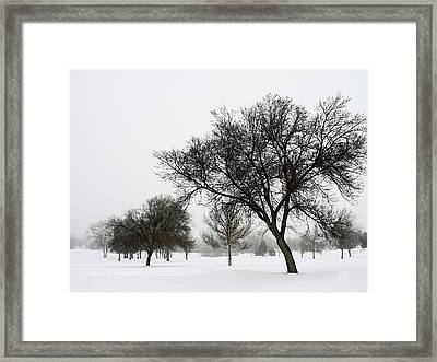 A Winter's Day Framed Print by The Forests Edge Photography - Diane Sandoval