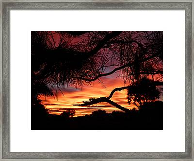 A Wishbone Sunset Framed Print by Cindy Wright