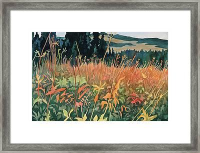 Alpine Autumn Framed Print by Anne Havard