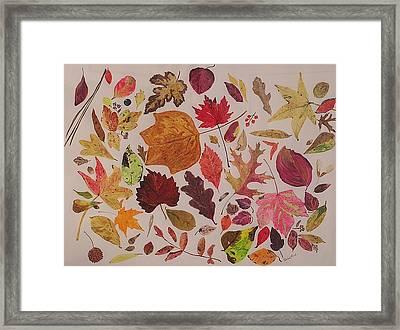 Autumn Leaves Framed Print by Diane Frick