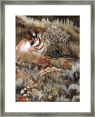 Framed Print featuring the painting Autumn Splendor by Sheri Gordon