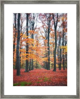Autumn Whispers I Framed Print by Artecco Fine Art Photography