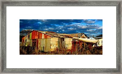 Backyard Australia Framed Print by Tim Nichols
