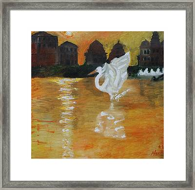 Bathed In Sunlight Framed Print by Neena Alapatt