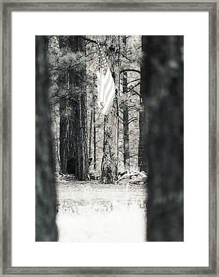 Black Bear Pledge  Framed Print