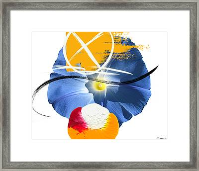 Blue Orange Framed Print