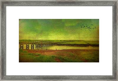 Framed Print featuring the photograph Boardwalk On Cape Cod by Gina Cormier