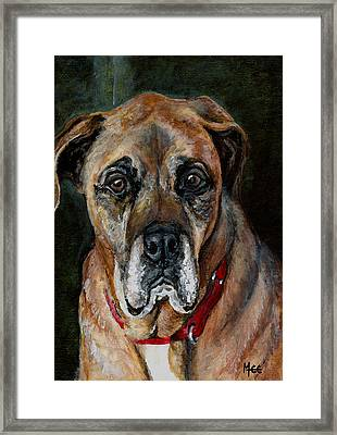 Boo For Dogtown Framed Print by Mary-Lee Sanders