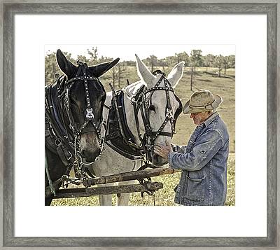 Bound By Trust Framed Print by Ron  McGinnis
