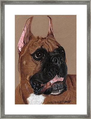 Boxer Vignette Framed Print by Anita Putman