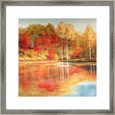 Brook's Pond Framed Print by Diana  Tyson